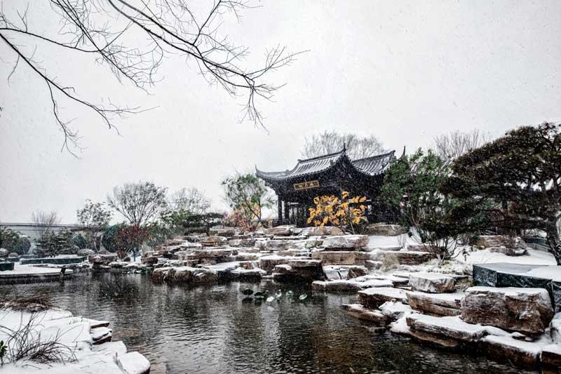 鲁商万科城雪景图