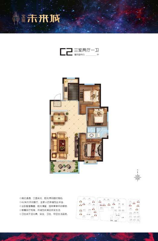 宝丽未来城 C2户型 三室两厅一卫