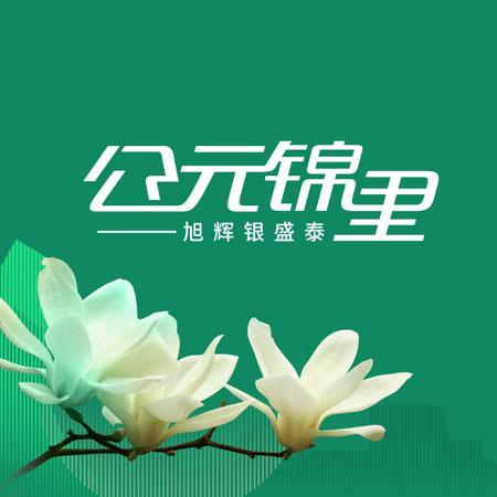 旭辉银盛泰·公元锦里