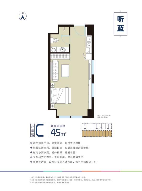 远洋城大家公寓(大家·蓝)户型 45㎡