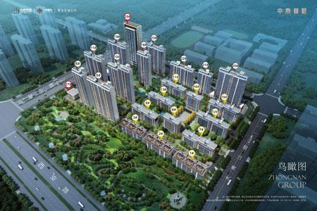 中南·林樾_临沂房产网