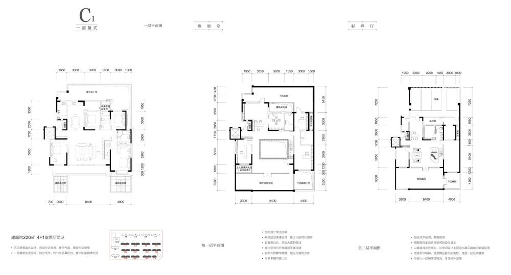 C1一层复式 约220㎡ 4+1室两厅两卫